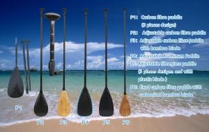 Paddles P1